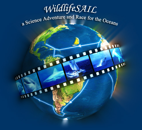 WildlifeSAIL - Inspire a new generation to understand and care for the oceans